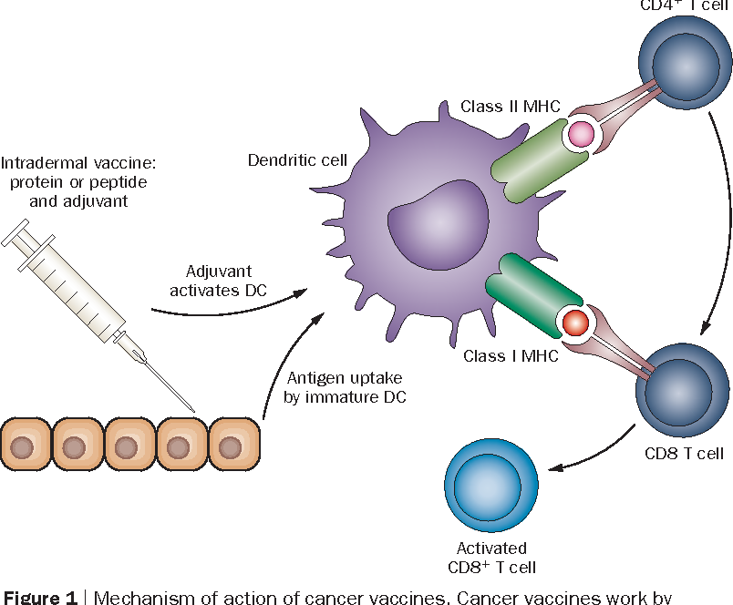 Figure 1 from Breathing new life into immunotherapy: review