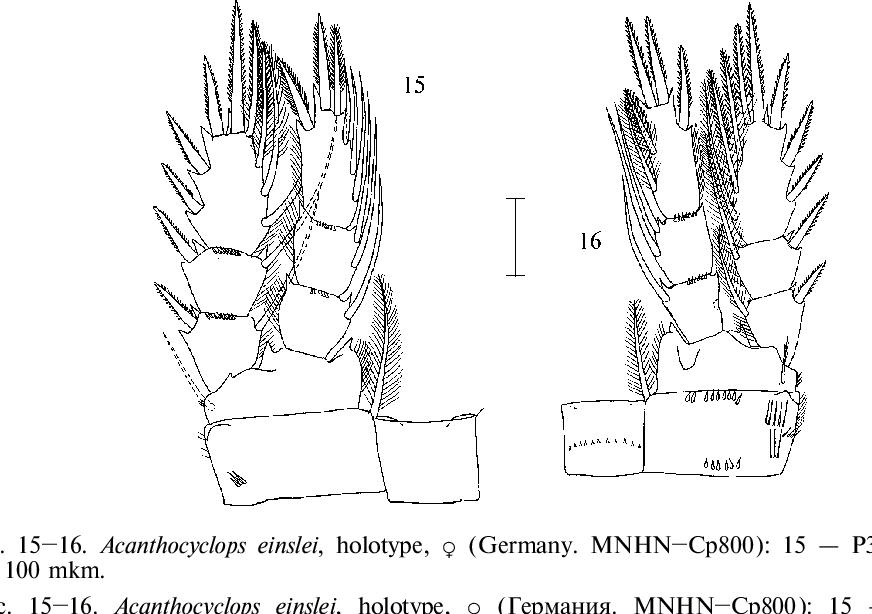 figure 15–16