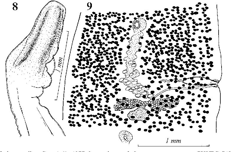 figure 8–9