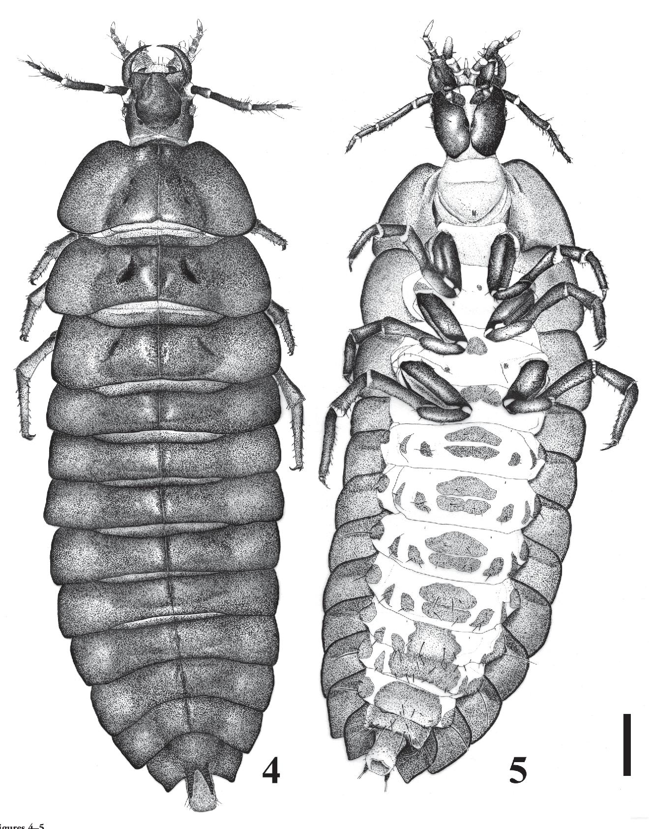 figure 4–5