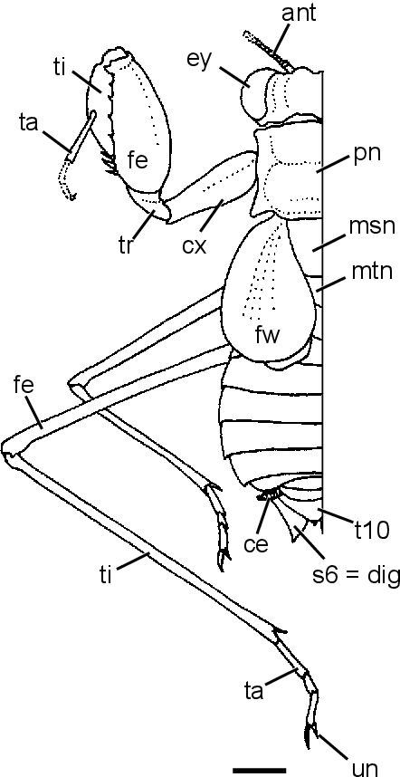 figure 276