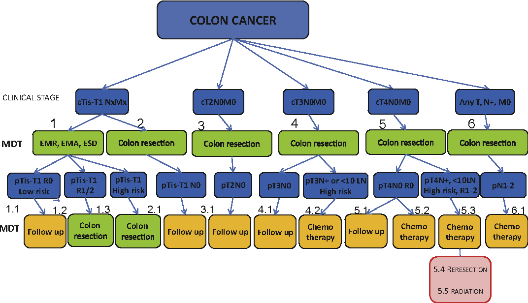 Figure 3 From Eurecca Colorectal Multidisciplinary Management European Consensus Conference Colon Rectum Semantic Scholar