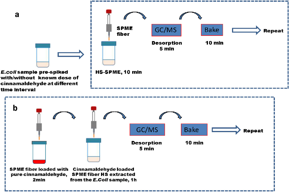 Figure 1 from Automated SPME-GC-MS monitoring of headspace ... on