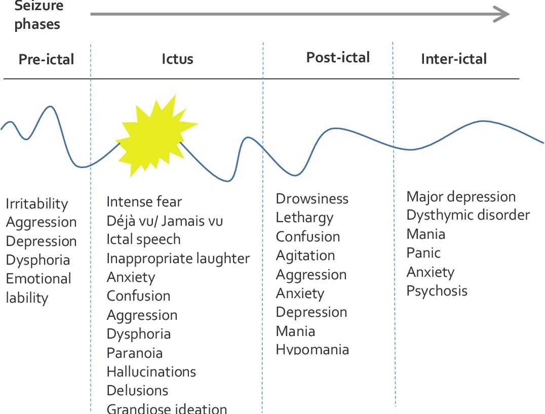 PDF] Investigating susceptibility to bipolar disorder