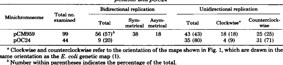 Pdf Functional Analysis Of Minichromosome Replication Bidirectional And Unidirectional Replication From The Escherichia Coli Replication Origin Oric Semantic Scholar
