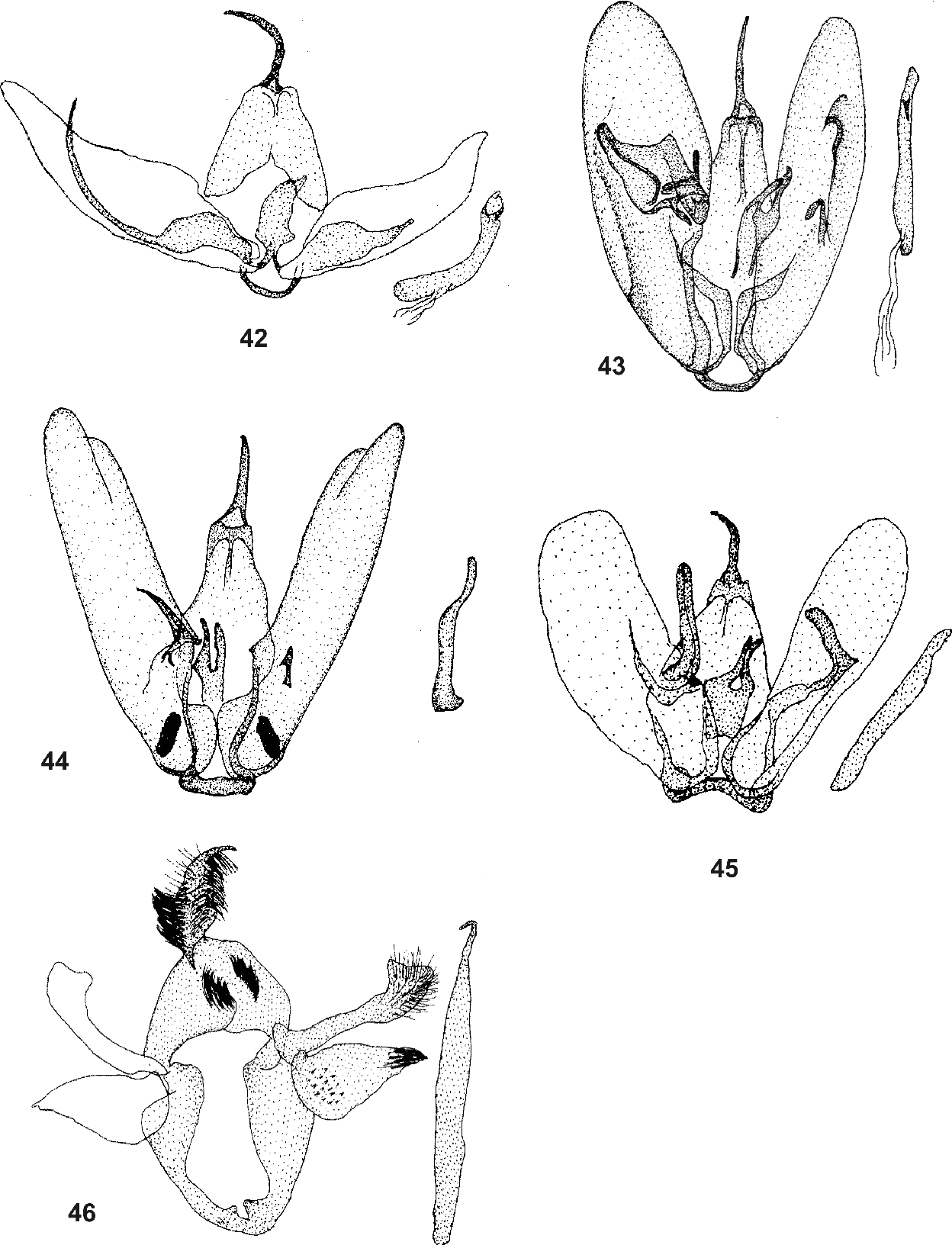 figure 42-46