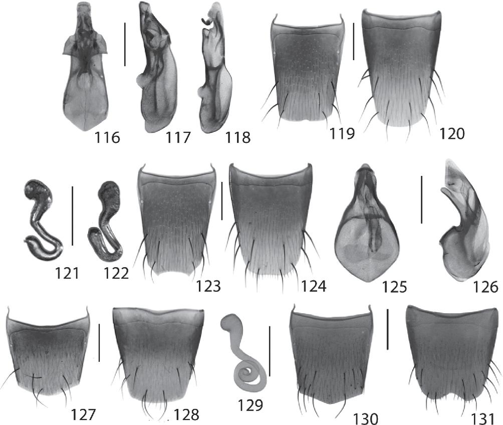 figure 116–131