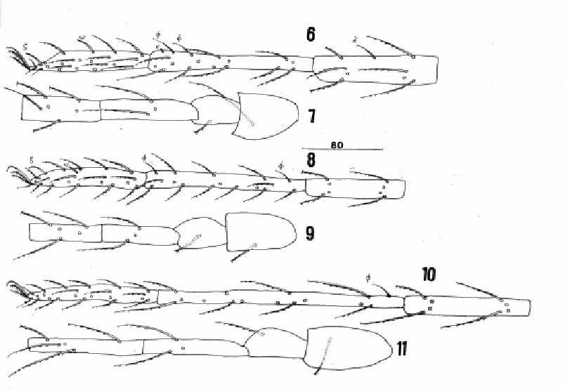 figure 12-19