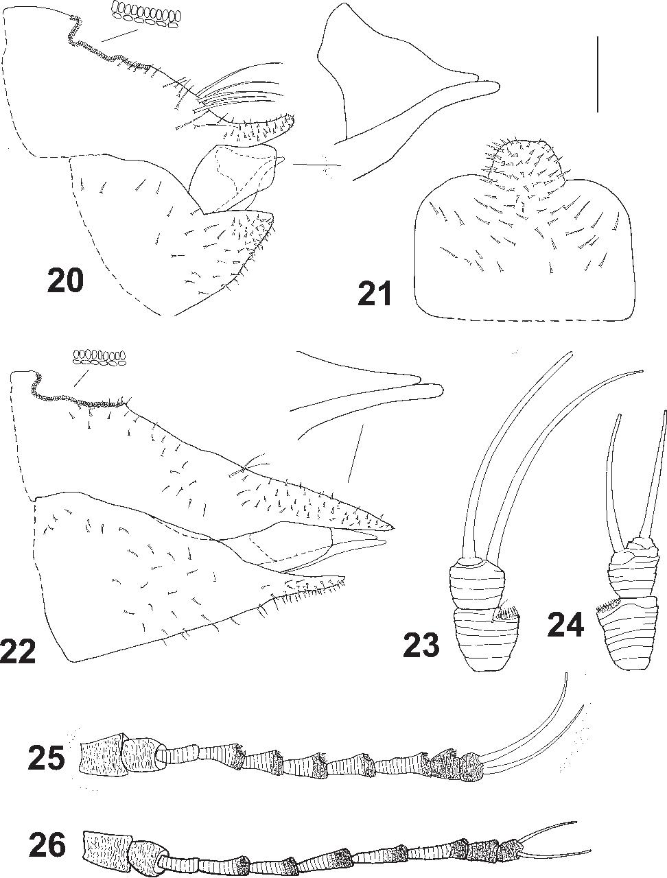 figure 20–26