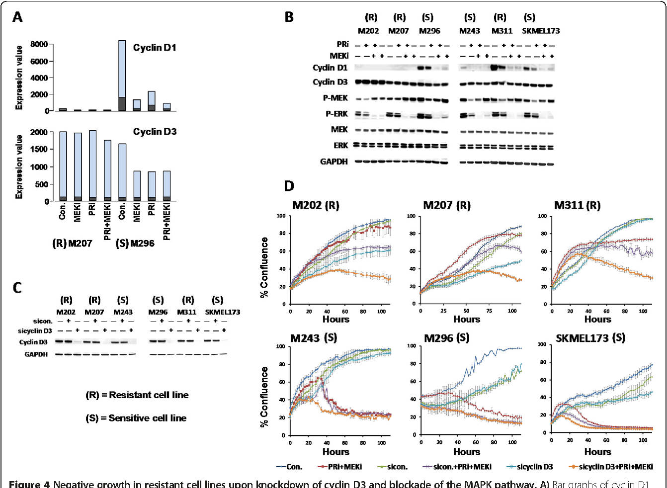 (PDF) MEK/MELK inhibition and blood-brain barrier