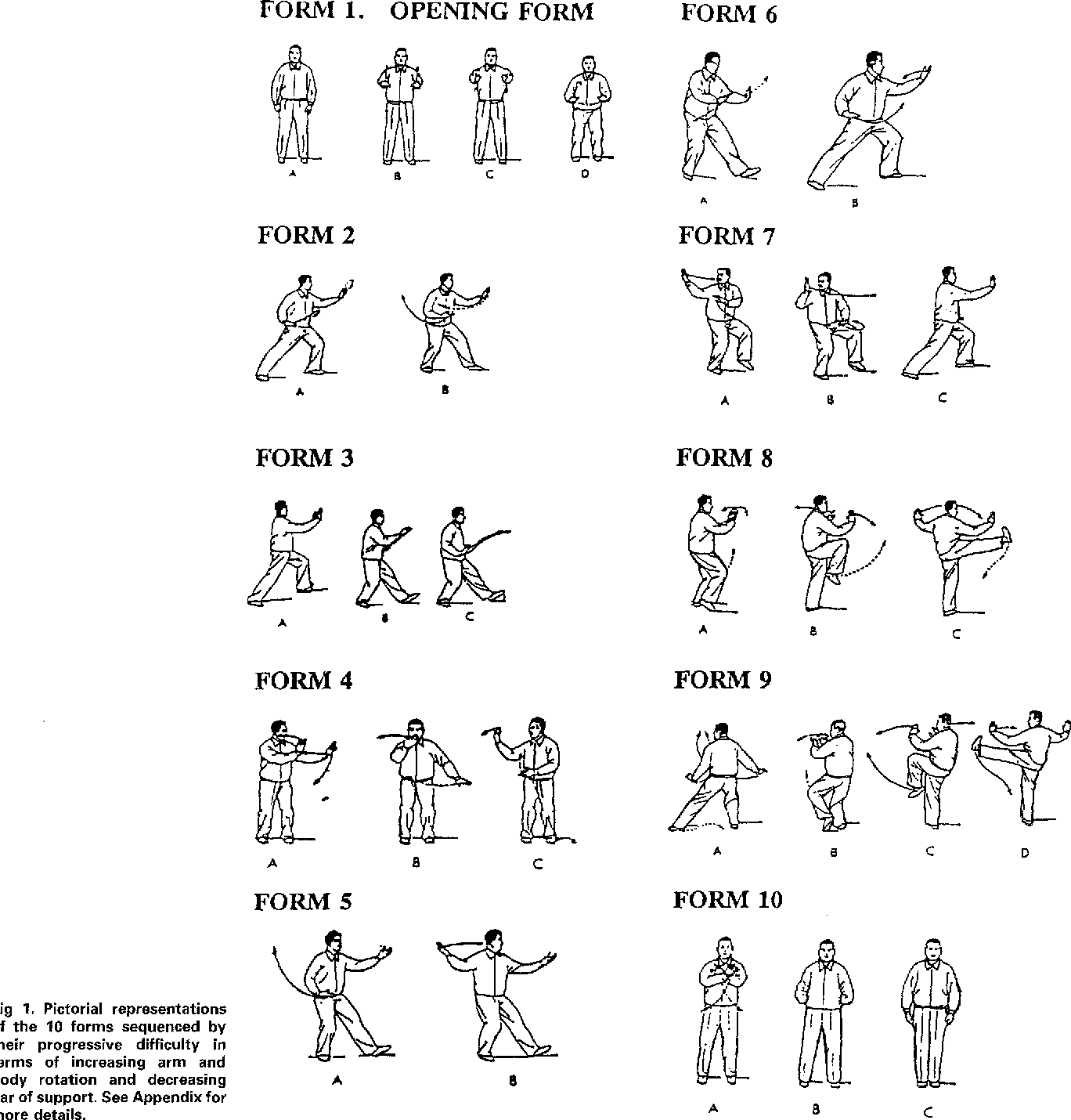 Figure 1 from Exploring the basis for Tai Chi Chuan as a