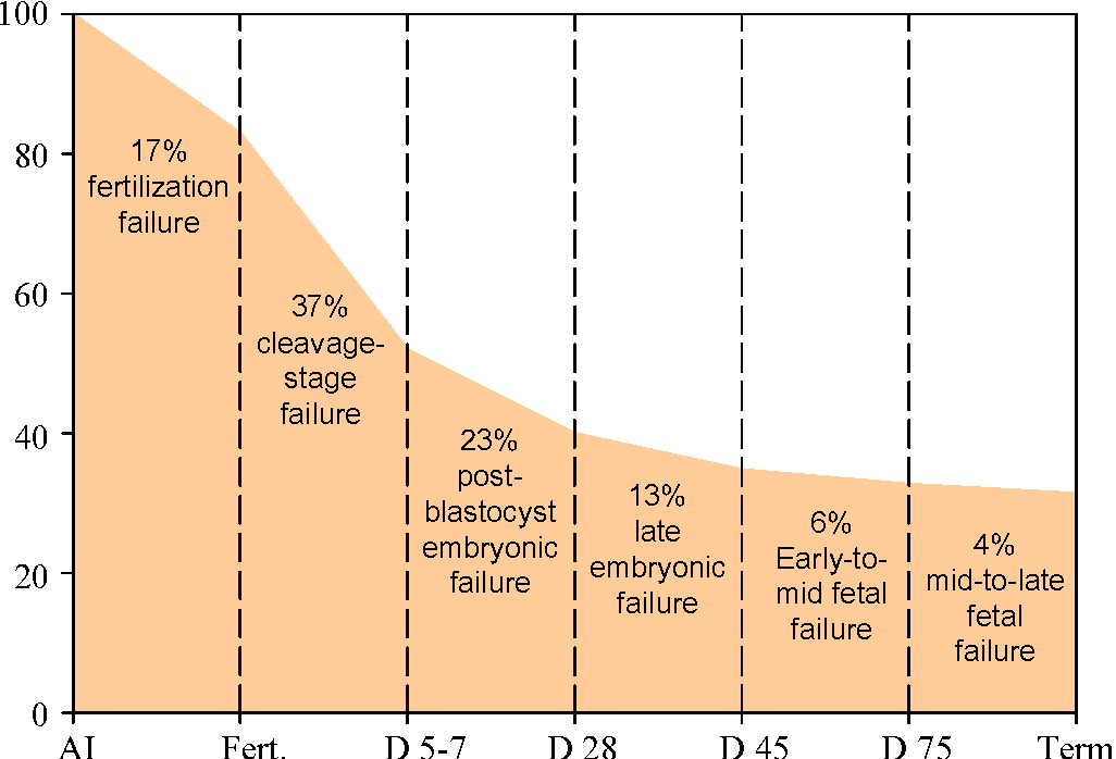 Figure 3 From Challenges To Fertility In Dairy Cattle From