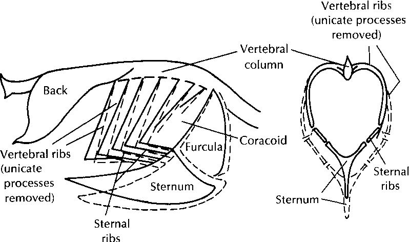 figure 8-6