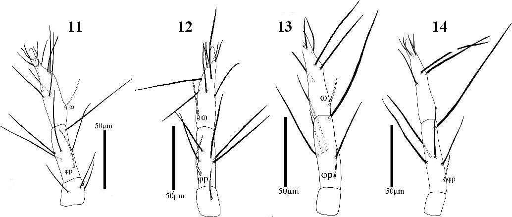 figure 11−14