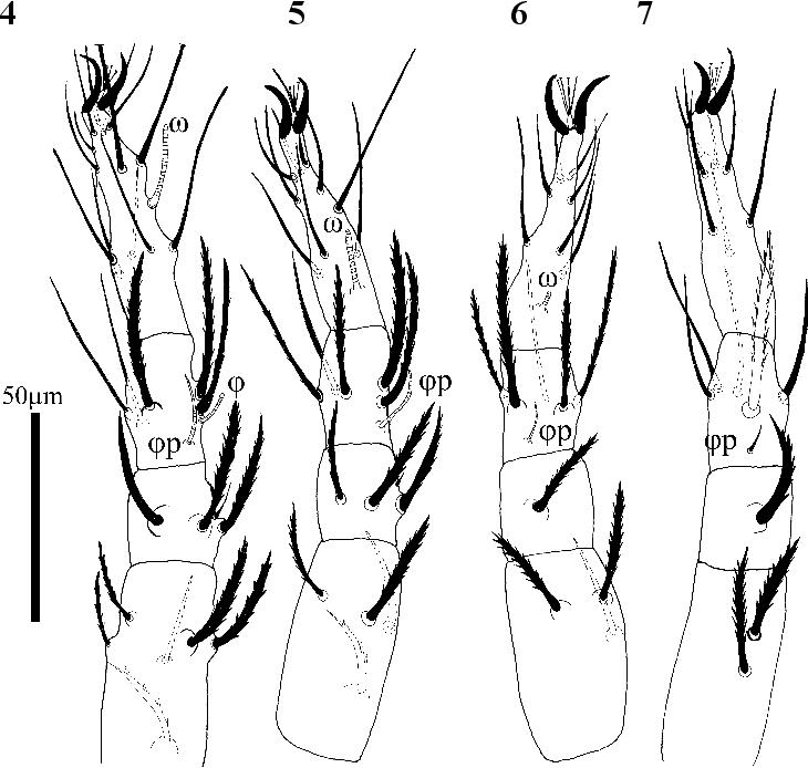 figure 4−7
