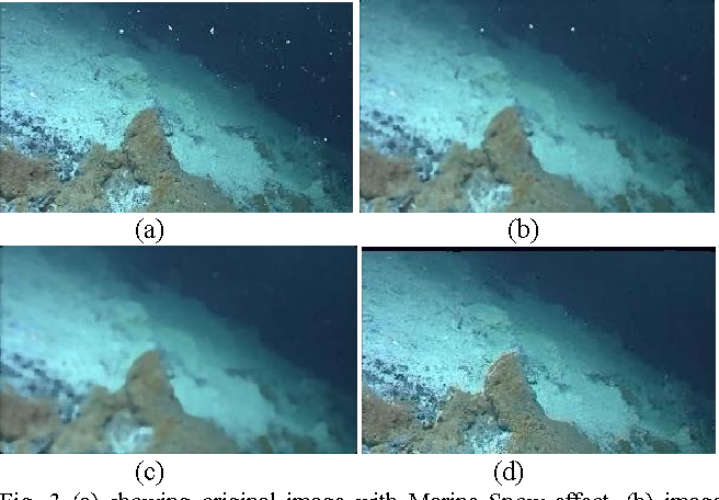 Figure 3 from Elimination of Marine Snow effect from