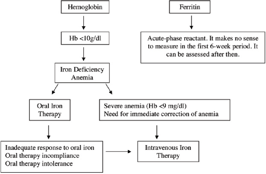 Figure 2 from Diagnosis and treatment of iron deficiency anemia during  pregnancy and the postpartum period: Iron deficiency anemia working group  consensus report | Semantic Scholar