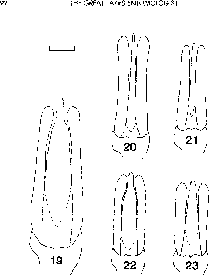 figure 19-23