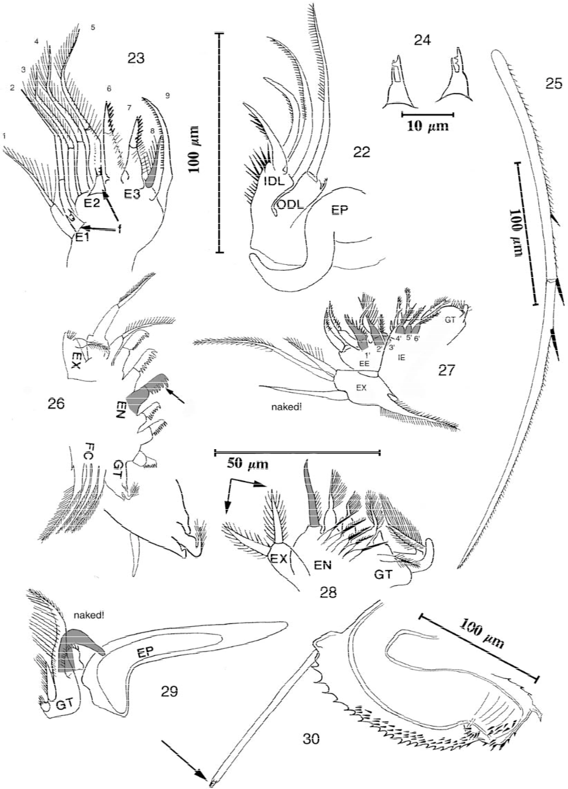 figure 22–30