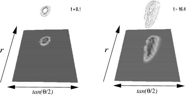 Figure 5. Two density snapshots in the at = const, as time progresses the tidal distortion of the polytrope becomes evident.