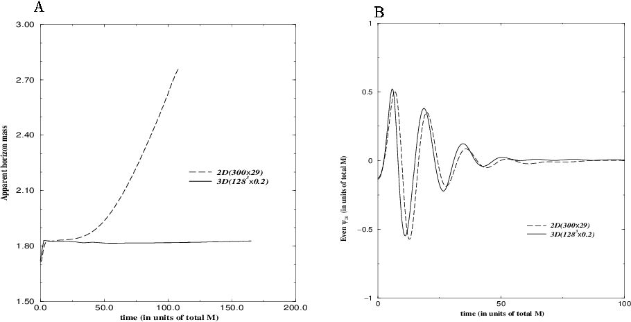 Figure 1. Plots of: (A) the apparent horizon area obtained with the 2D (dashed line) and 3D codes (solid line) vs. time, the problems induced by the use of singularity avoidance techniques are apparent in the growth of the apparent horizon which is not present in the 3D codes result. (B) Gravitational wave extraction with both codes, for the length of simulations considered with the 2D codes, the results are in good agreement.