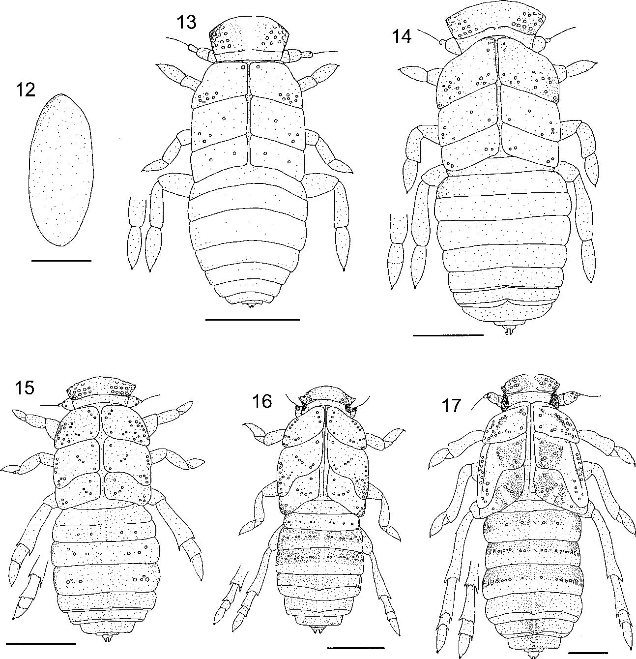 figure 12–17