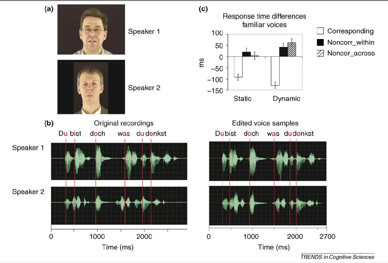 Audiovisual Integration in Speech and Speaker Perception