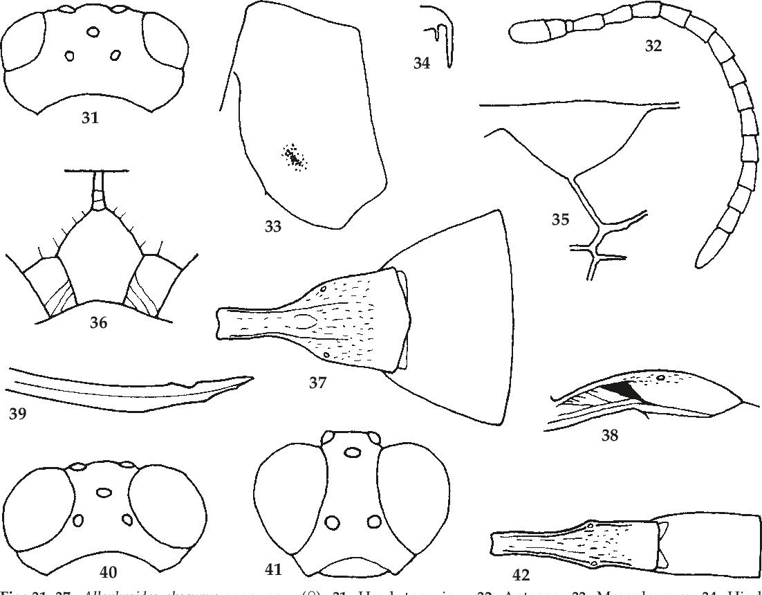 figure 31-37