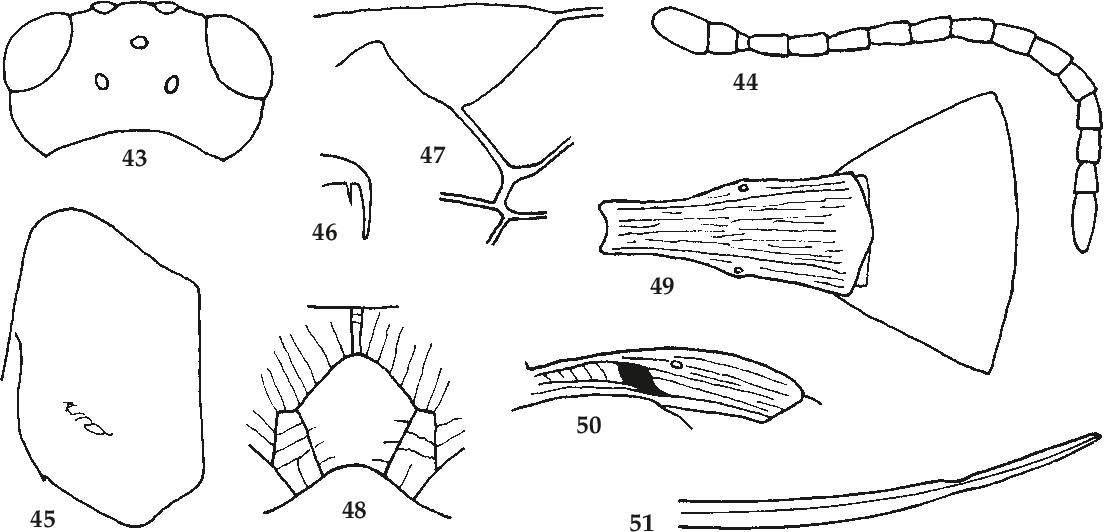 figure 43-51