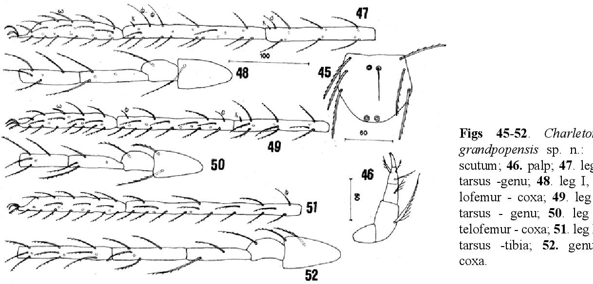 figure 45-52