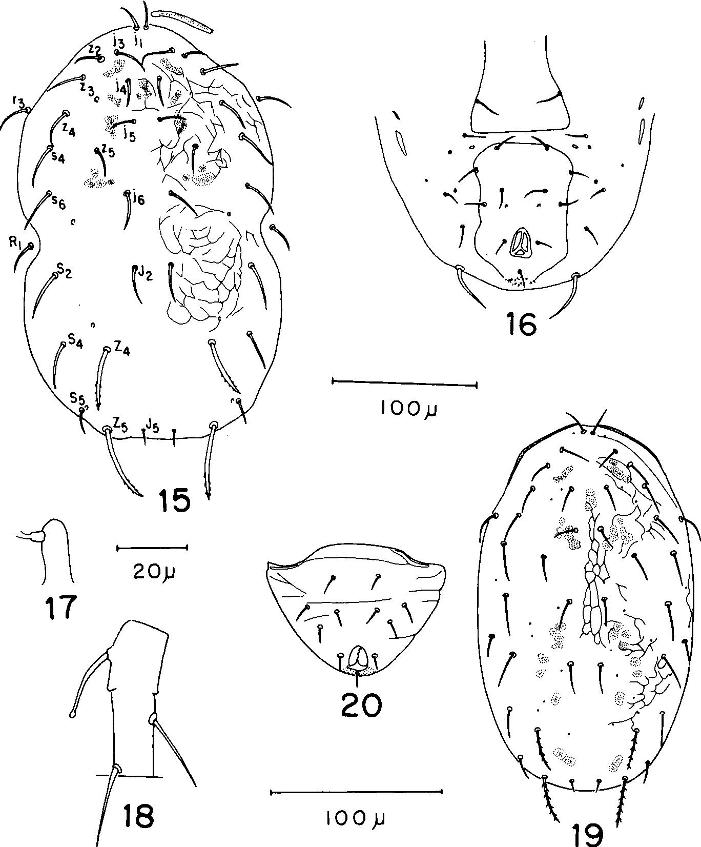 figure 15-20