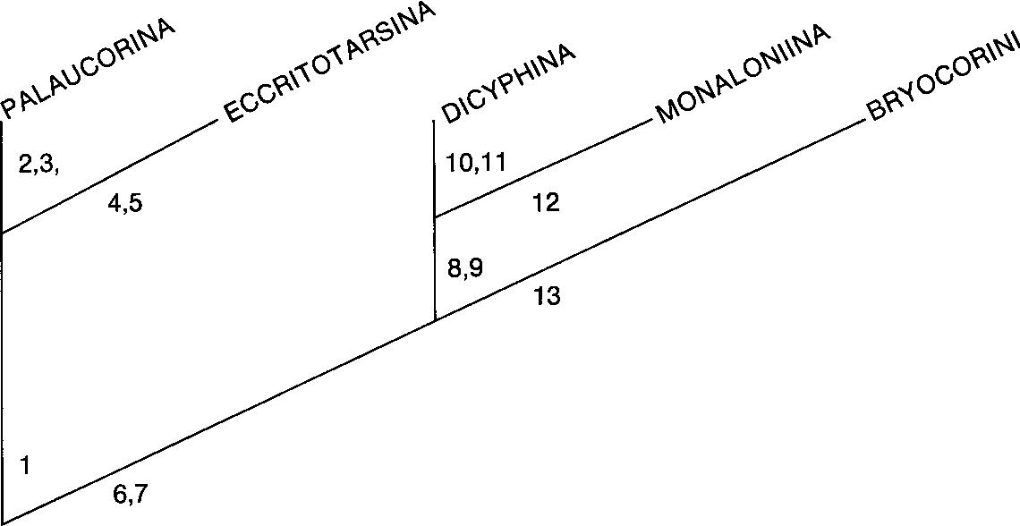 figure 46
