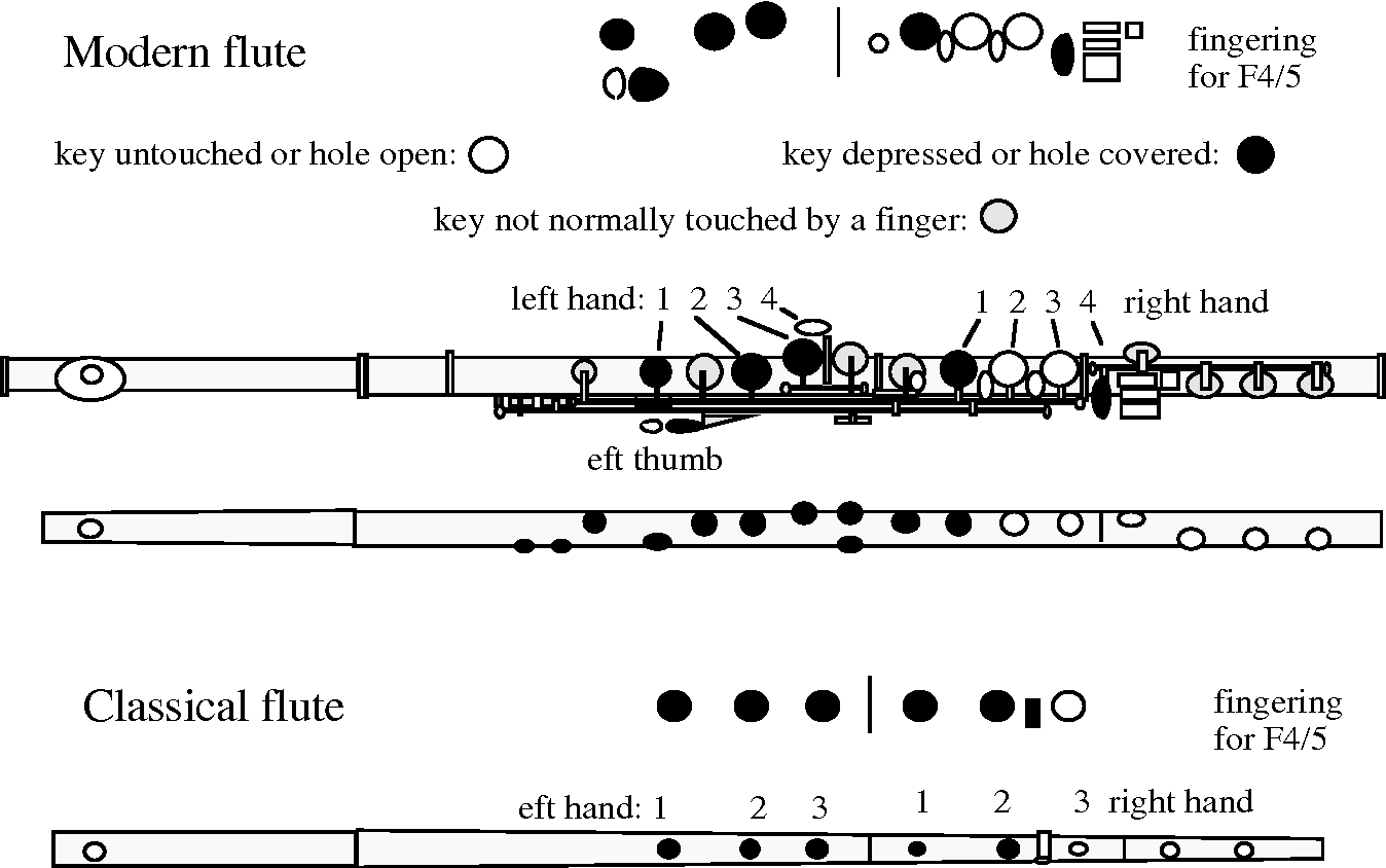 modern flute diagram wiring schematic diagram flute anatomy and evolution