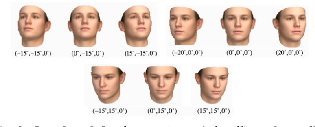 Figure 3 From Robust And Accurate 3d Head Pose Estimation Through 3dmm And Online Head Model Reconstruction Semantic Scholar