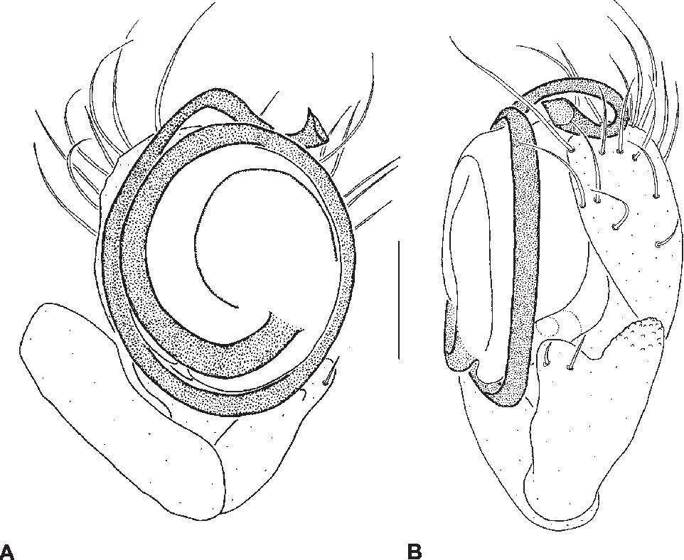 figure 111