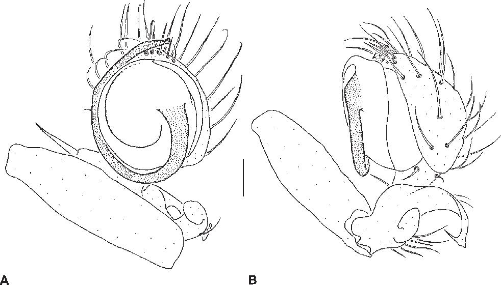 figure 183
