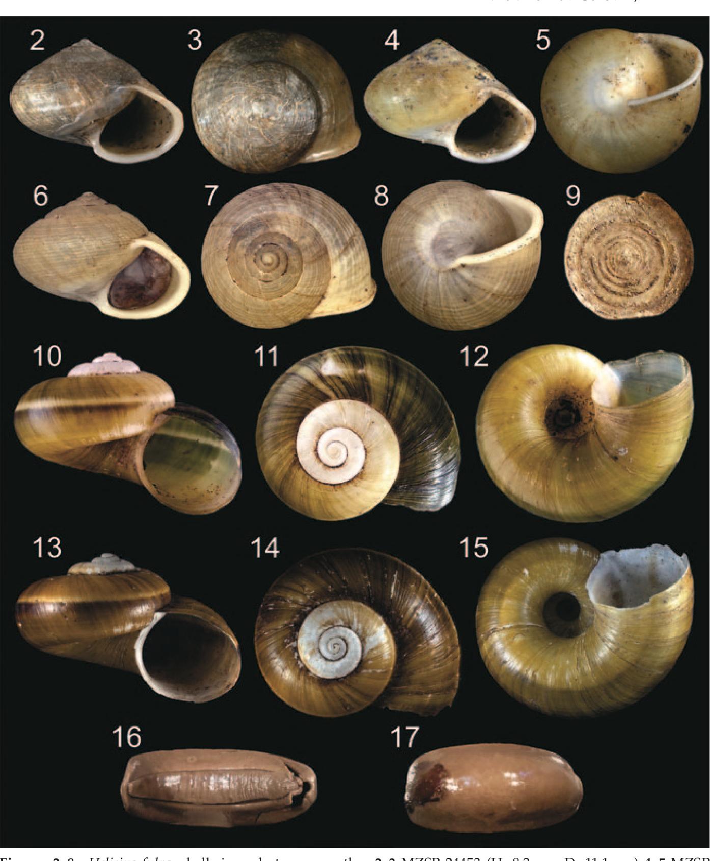 figure 2–8