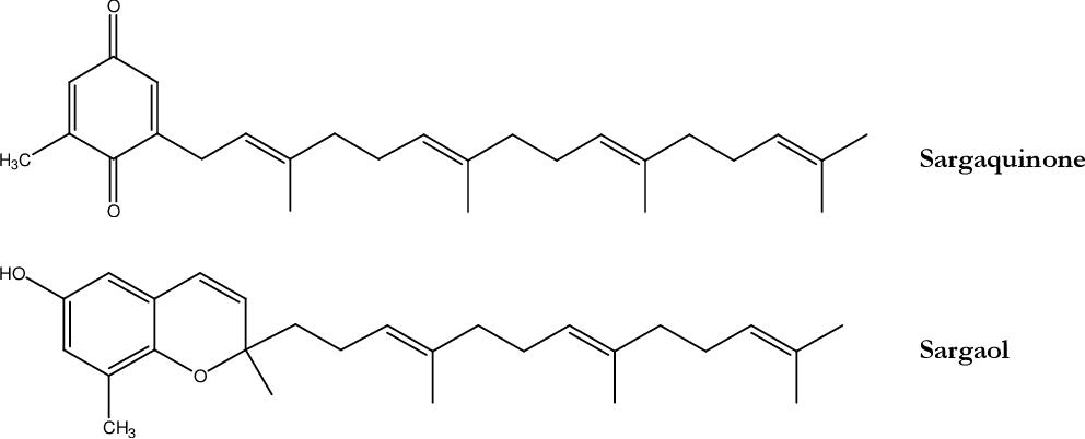 figure 77