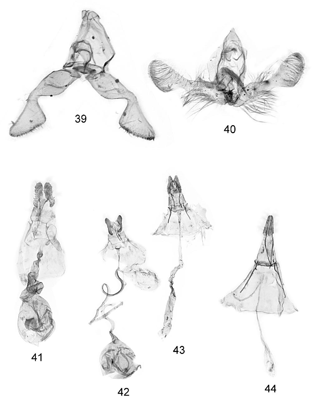 figure 39-44