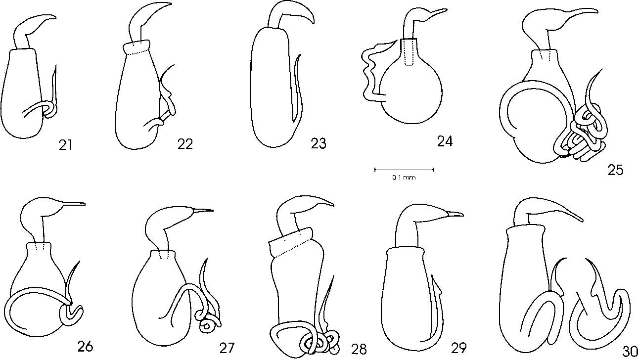 figure 21-30
