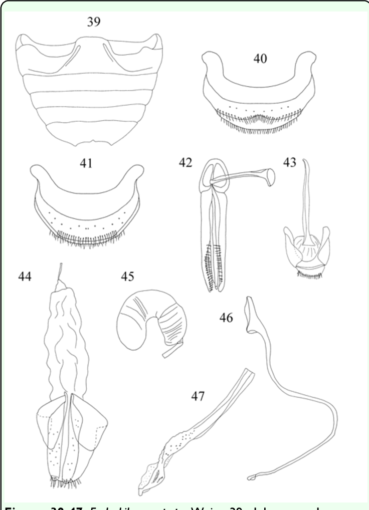 figure 39-47
