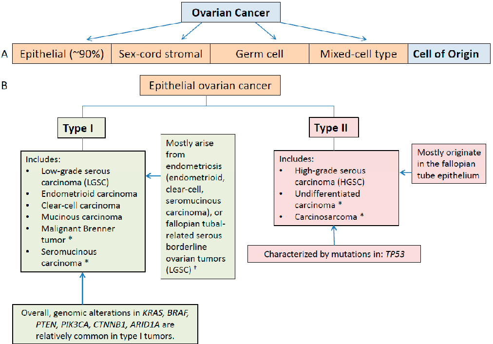 Figure 2 From Molecular Characterization Of Epithelial Ovarian Cancer Implications For Diagnosis And Treatment Semantic Scholar