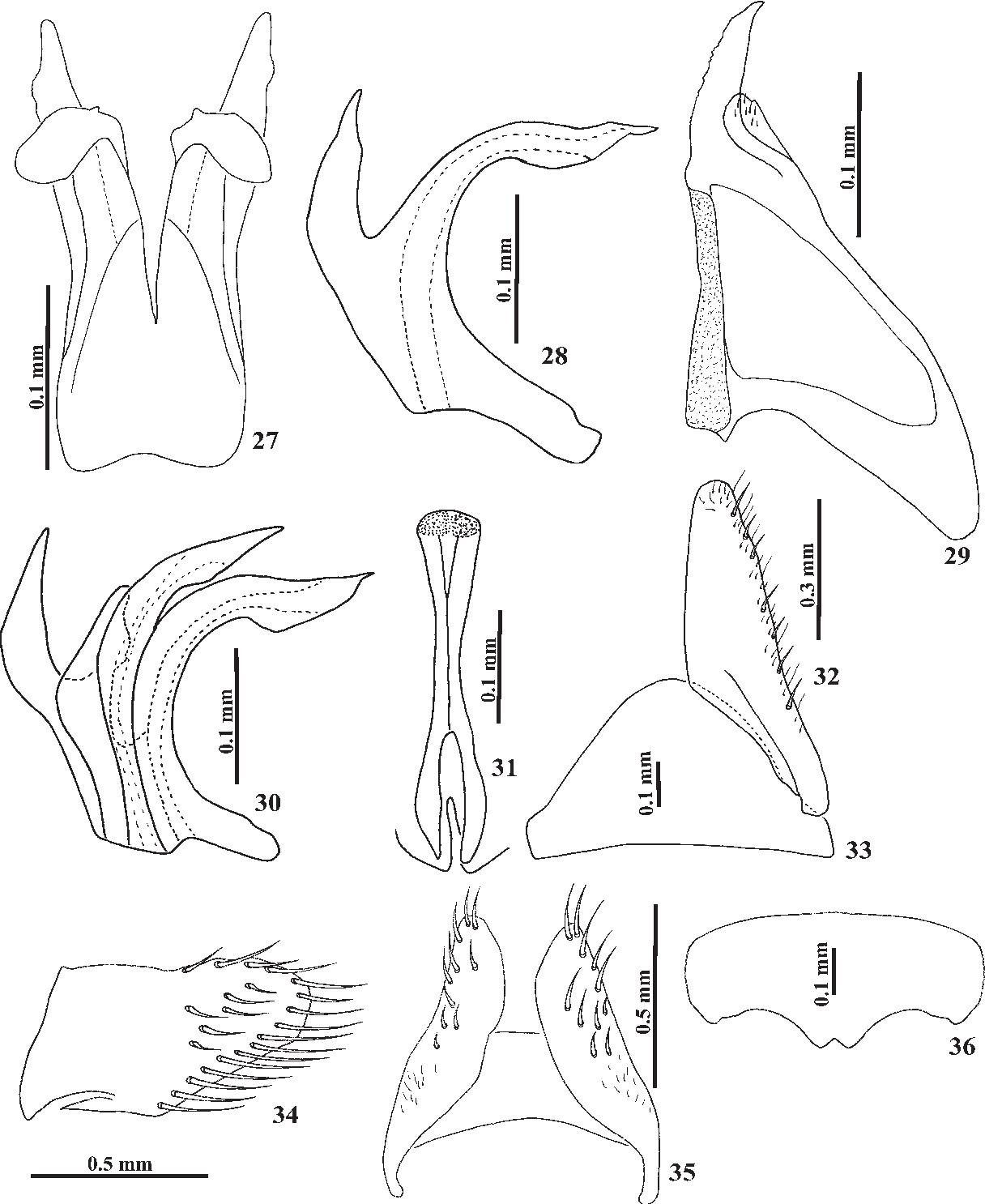 figure 27–36