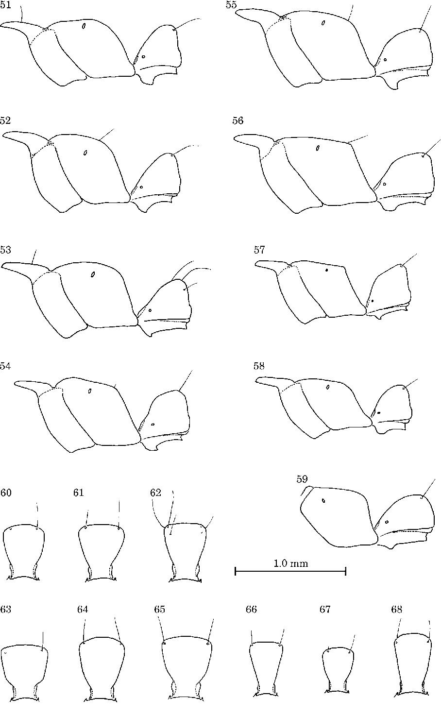 figure 51–68