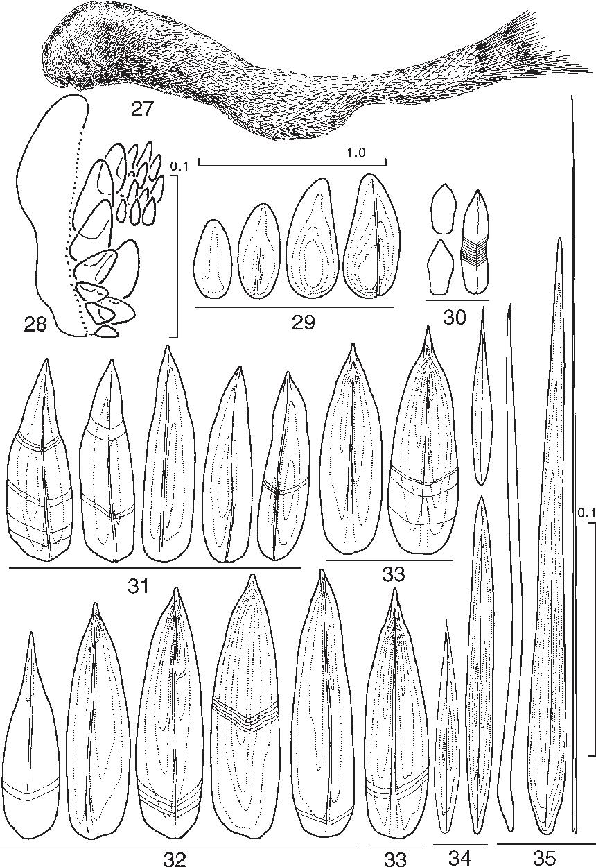 figure 27–35