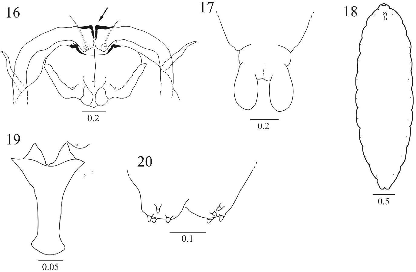figure 13-20