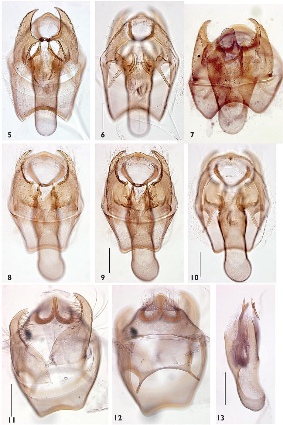 figure 5–13