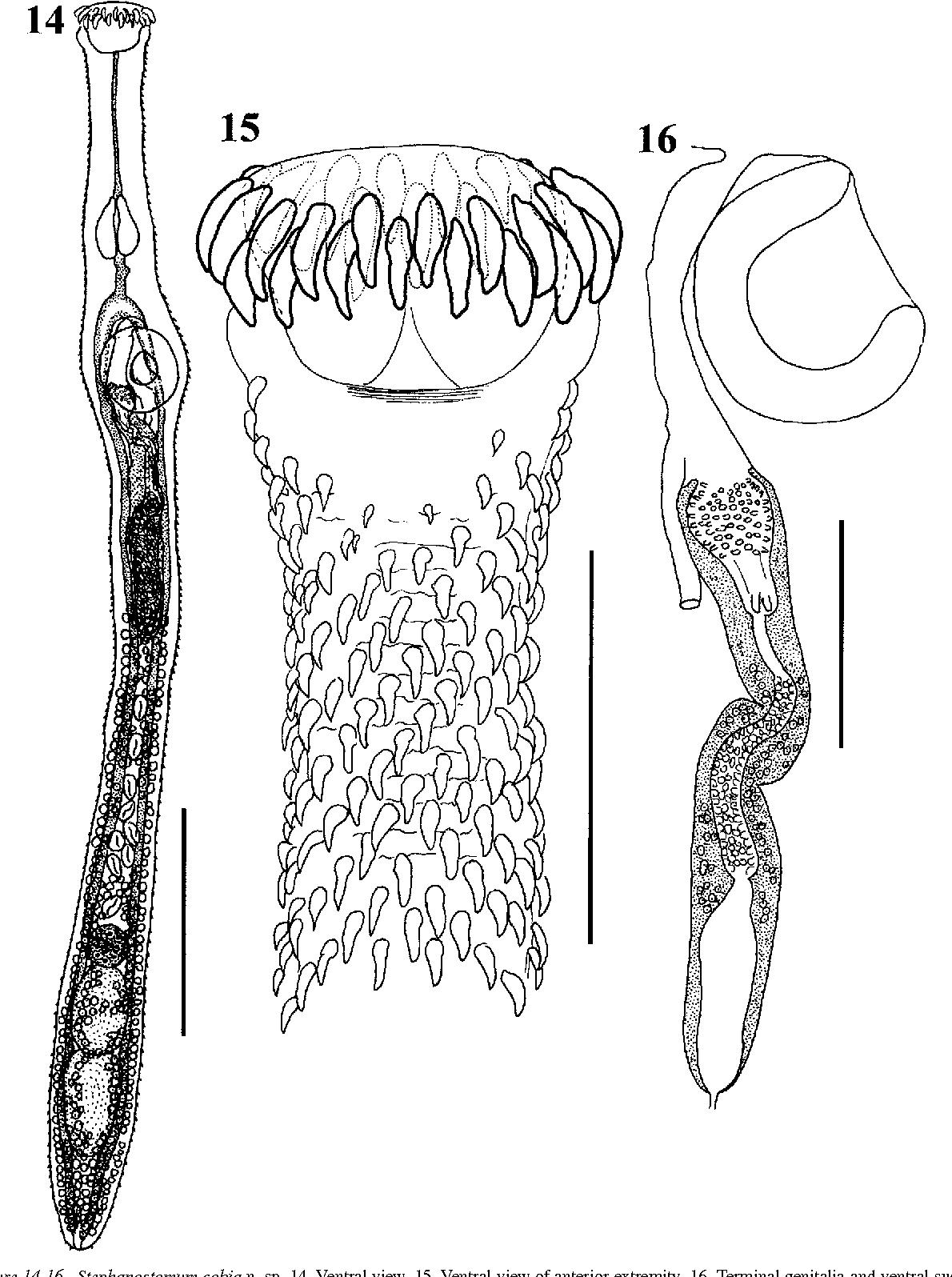 figure 14-16