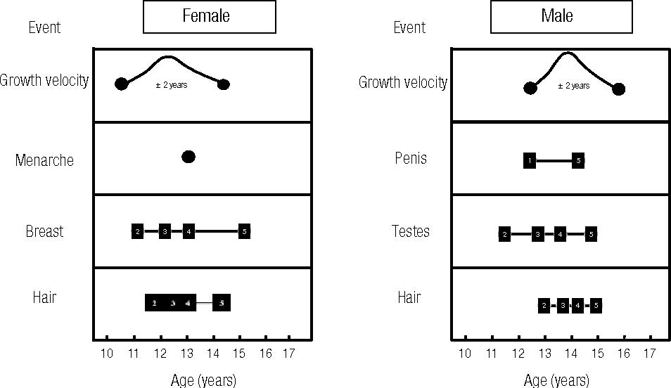 Figure 1 from Central precocious puberty: revisiting the