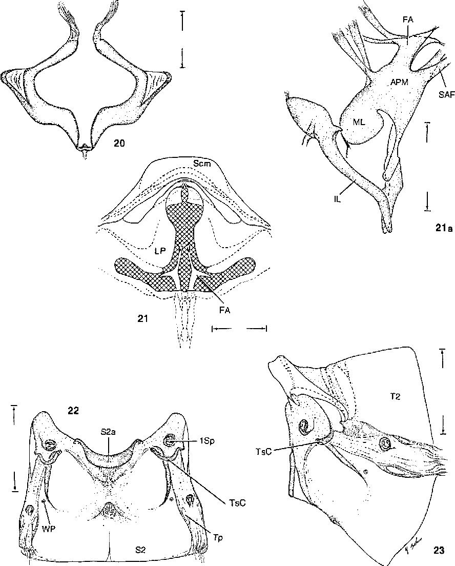 figure 20-23